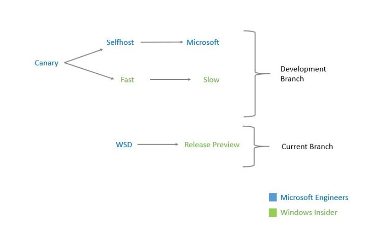 windows-insider-branches
