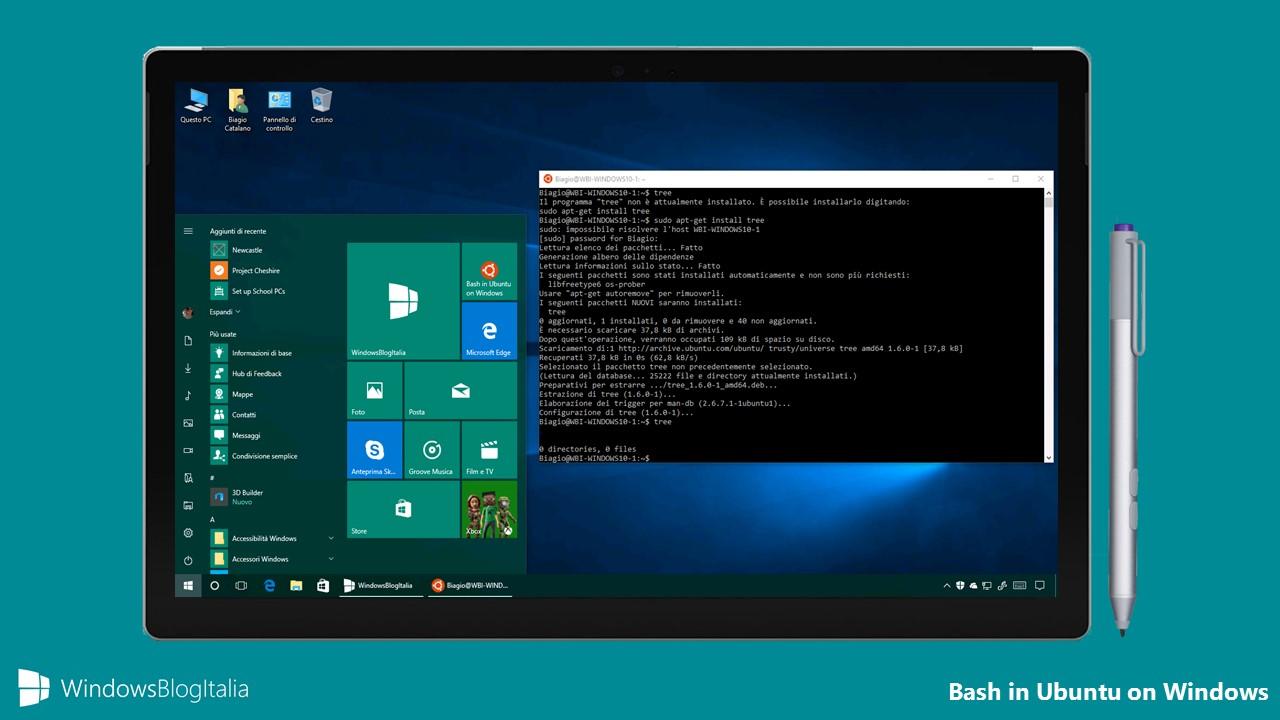 Bash in Ubuntu on Windows