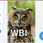 SwiftKey Android iOS 7.0 editor adesivi
