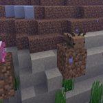 Minecraft Live - salamandra