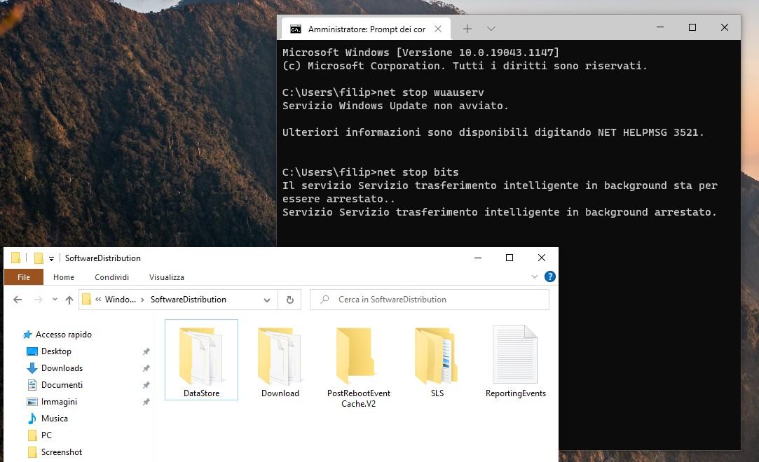 Prompt dei comandi di Windows - Comandi per Windows Update - Cartella Software Distribution