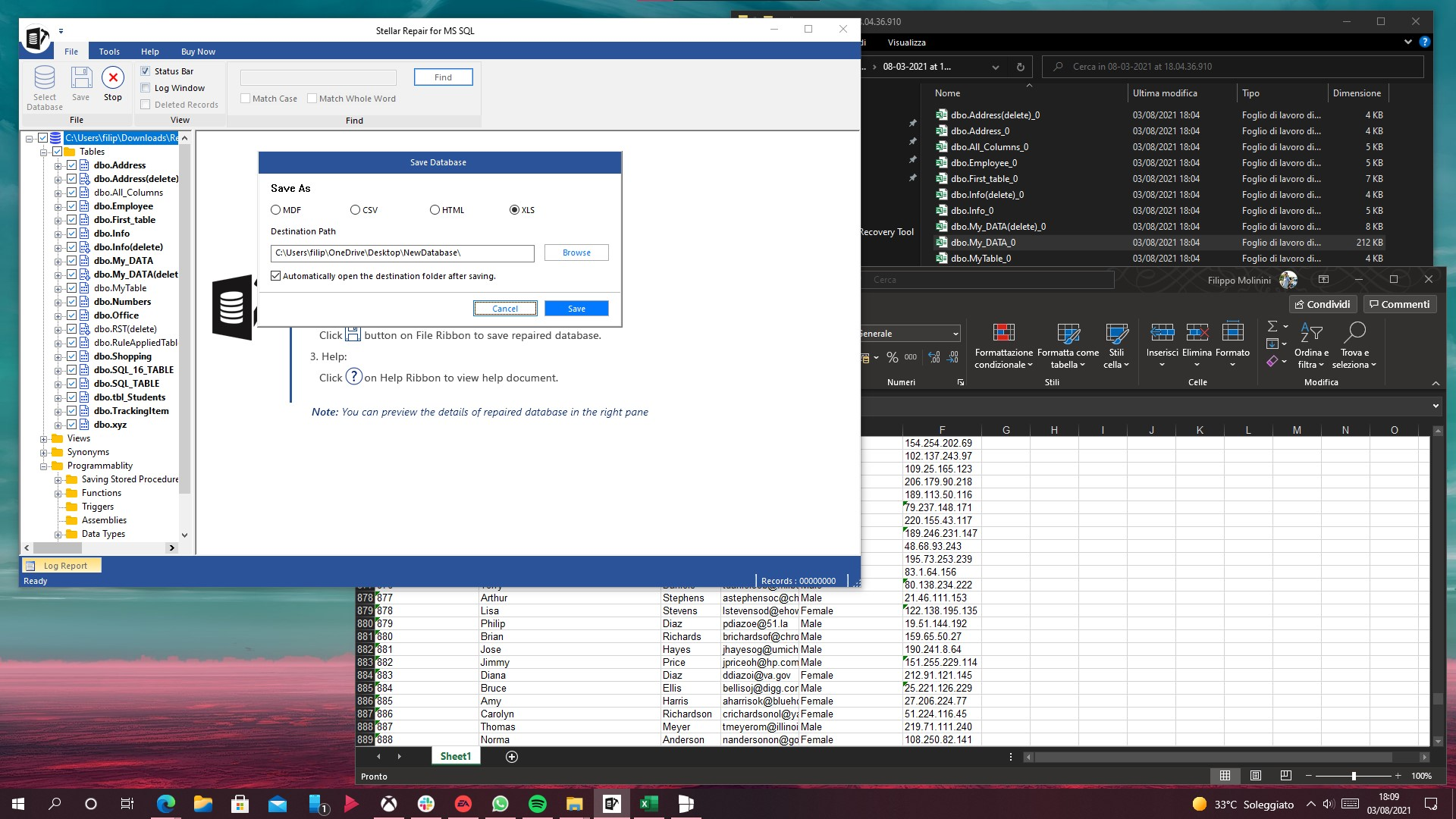 Stellar Repair for MS SQL per Windows - Esportazione database in file XLS