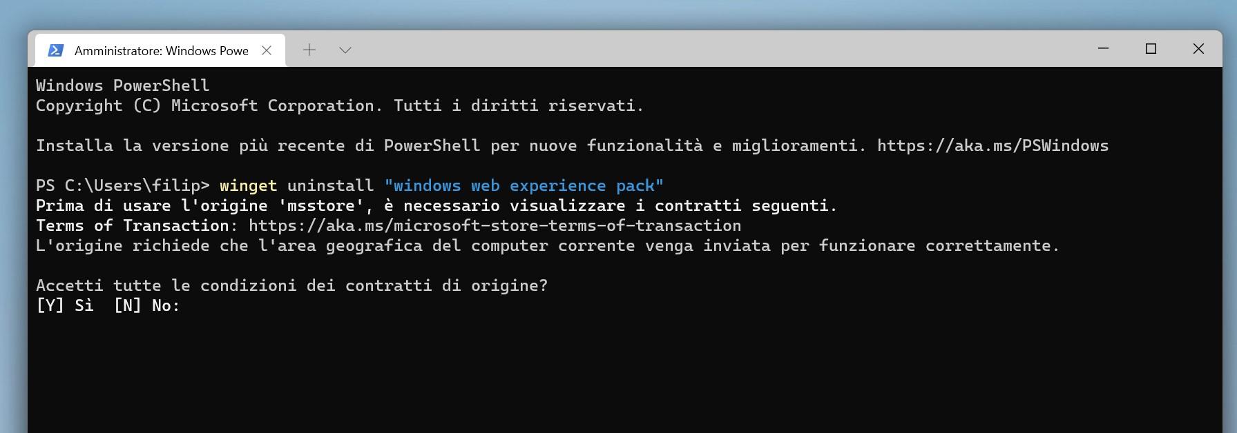 Windows Terminal - Disinstallazione Windows Web Experience Pack - Widgets